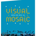 visual_mosaic ravenna video contest